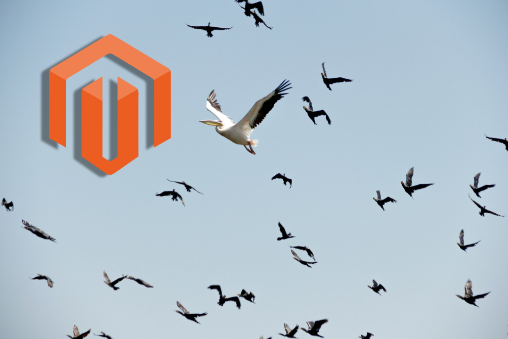 Making the Upgrade from Magento 1 to Magento 2 (Updated)